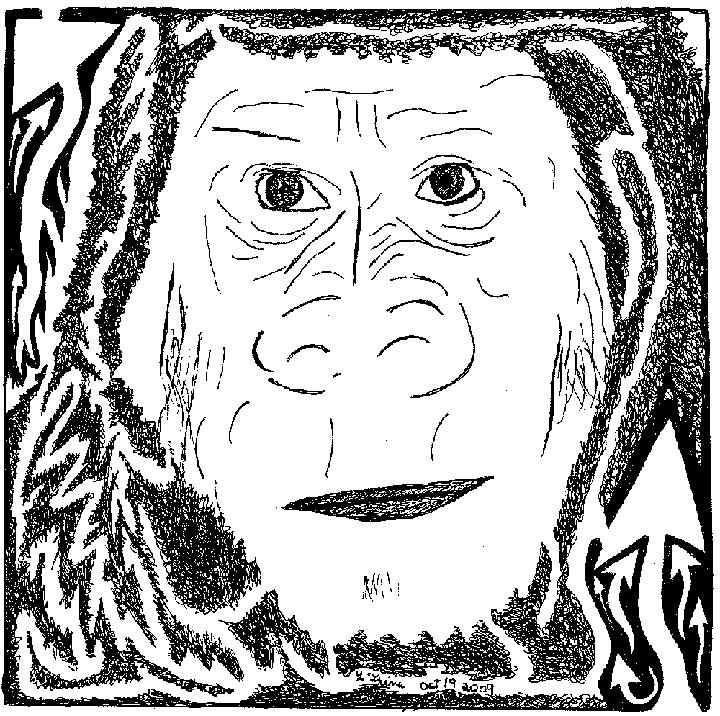 gorilla Mazes, maze