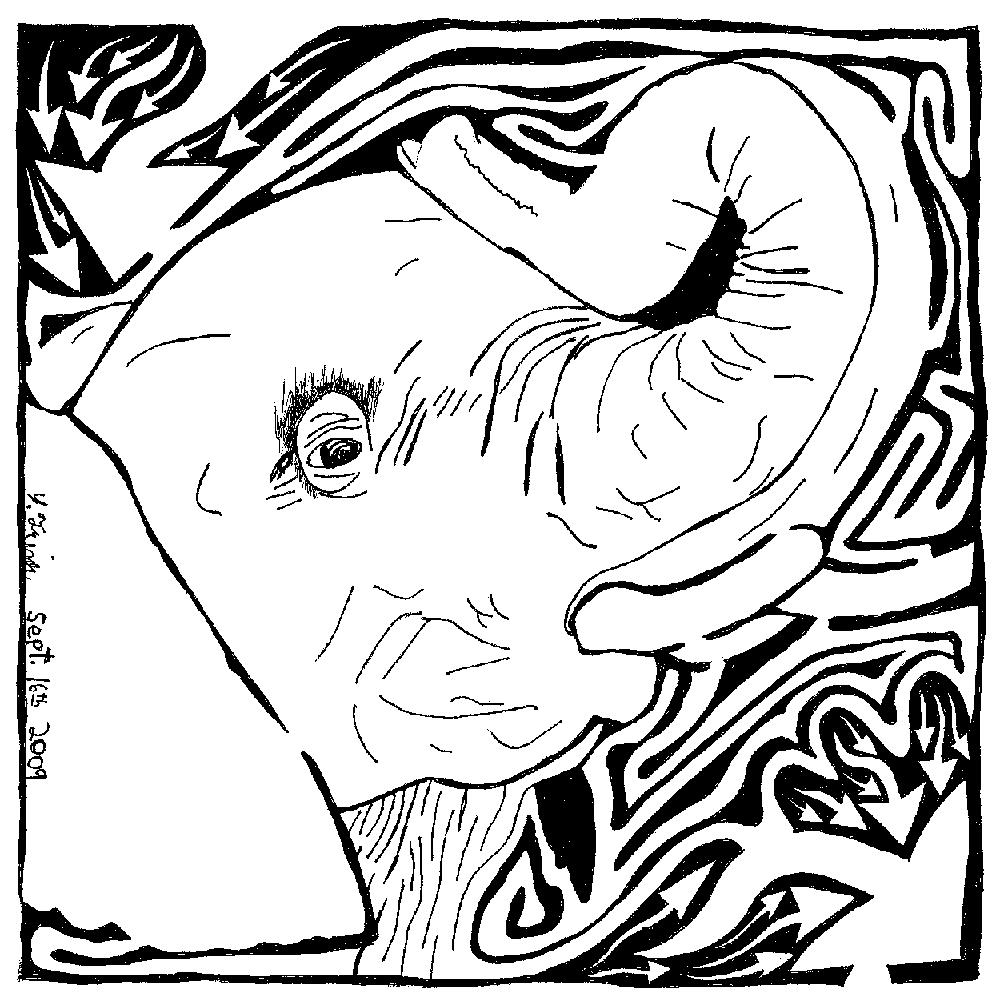 Elephant Maze Comic