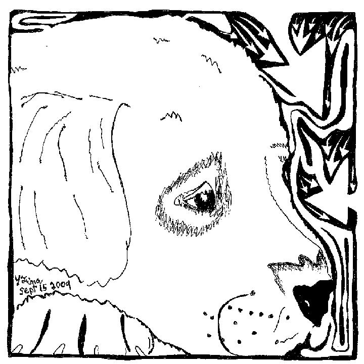 Puppy dog maze