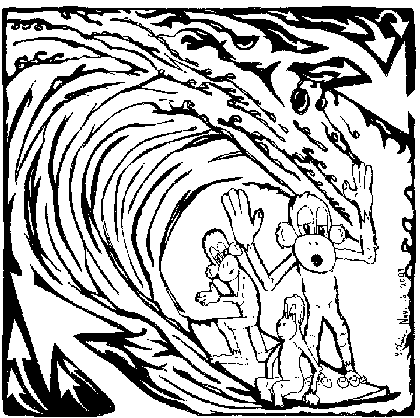 surf maze